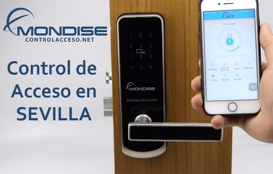 Control de Acceso Sevilla